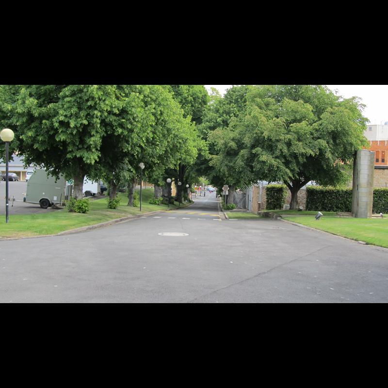 Linden Avenue